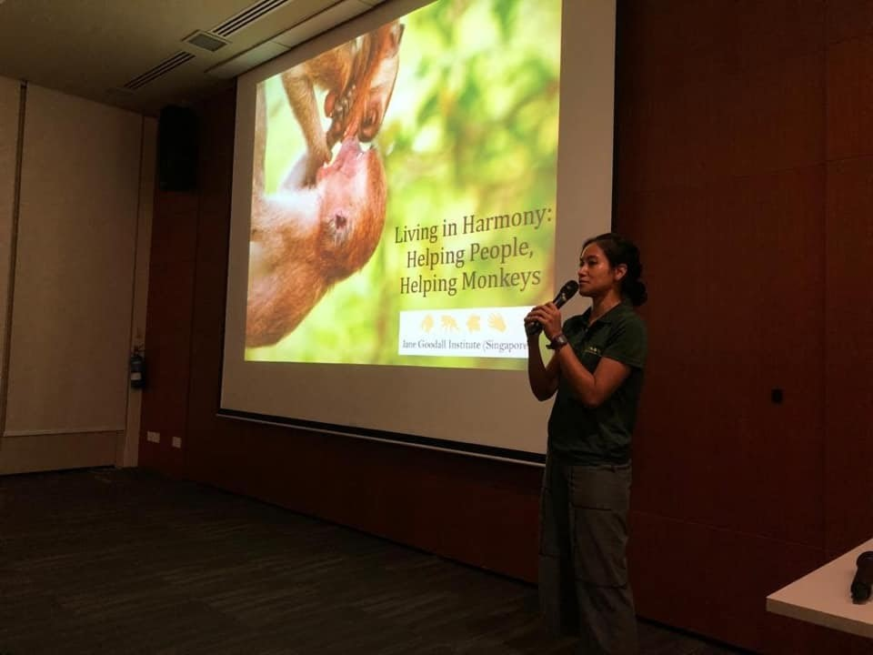 Primate researcher Sabrina gives an informative and interactive talk on human-macaque interactions at the Singapore Botanic Gardens. Photo credit: Jesler Van Houdt