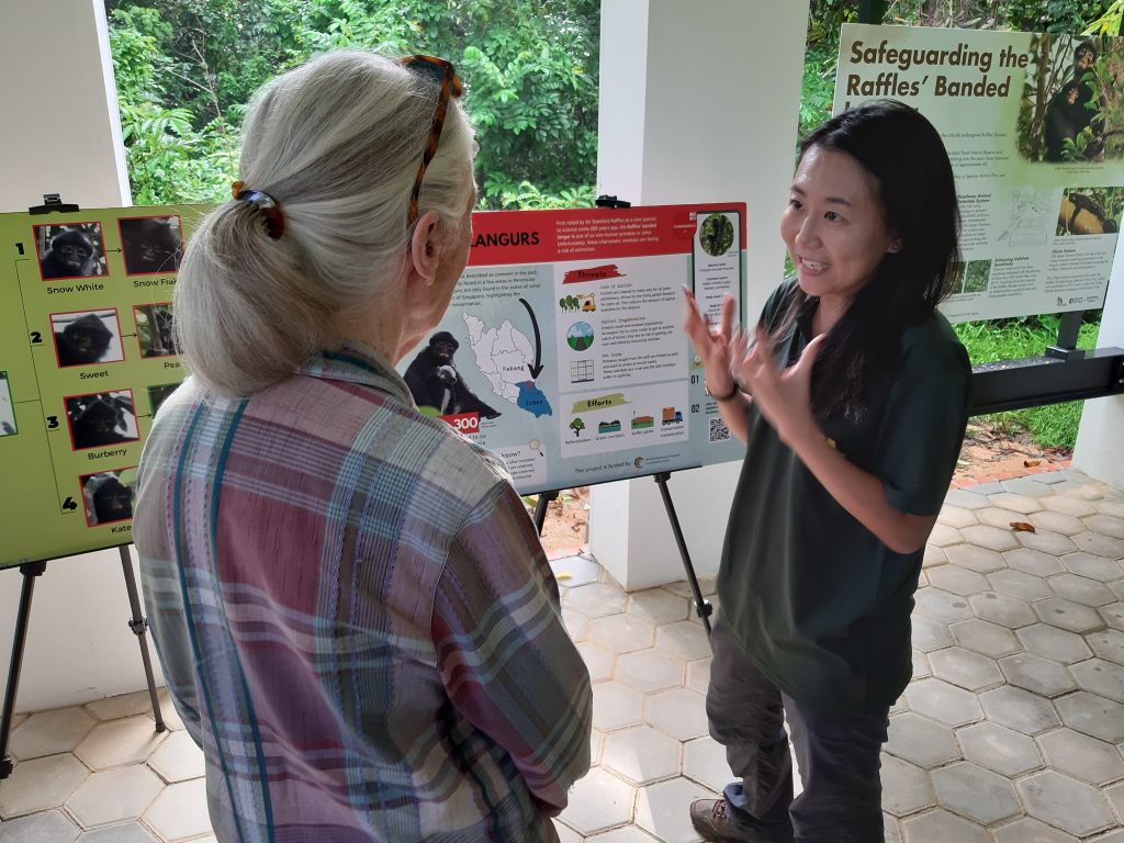 Andie Ang - Jane Goodall Singapore Plant for Hope
