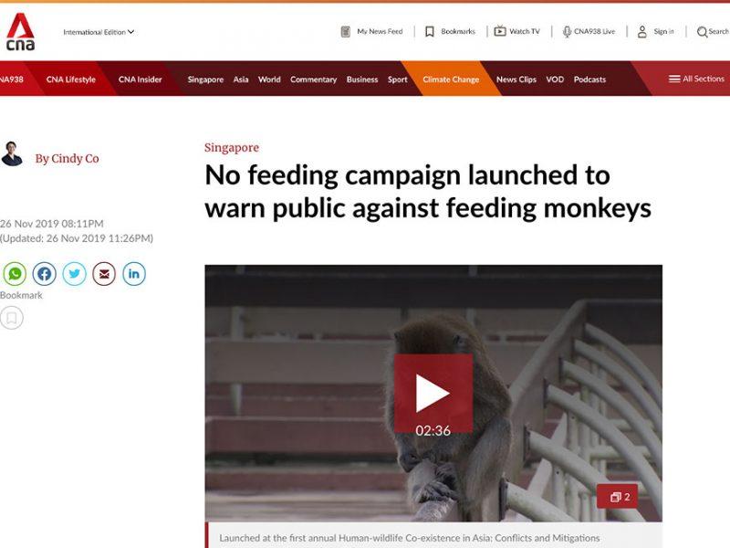 No feeding campaign launched to warn public against feeding monkeys