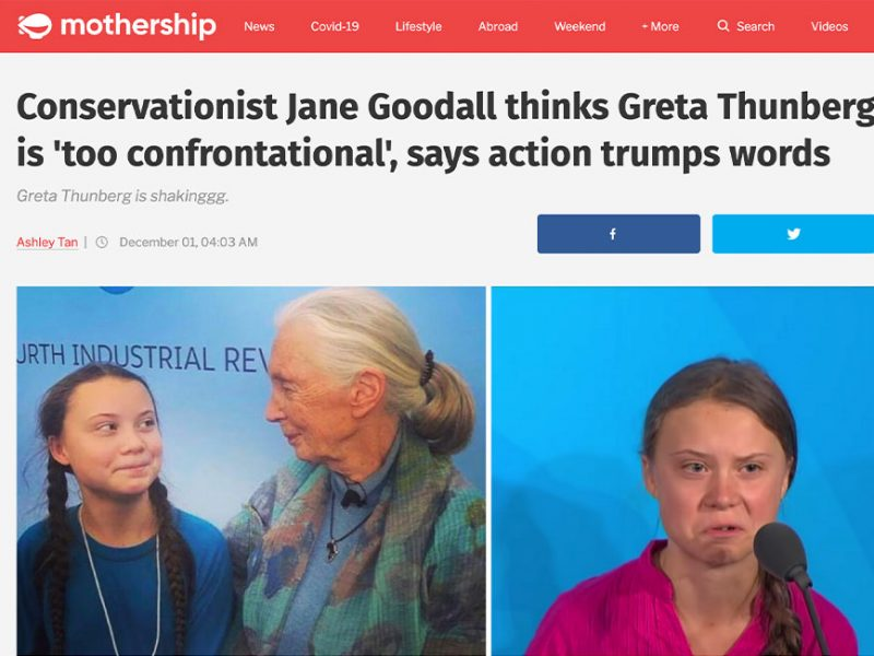 Conservationist Jane Goodall thinks Greta Thunberg is 'too confrontational', says action trumps words