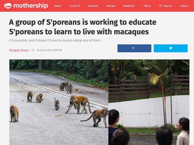 A group of S'poreans is working to educate S'poreans to learn to live with macaques