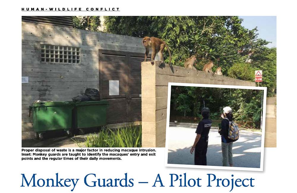 Monkey Guards – A Pilot Project