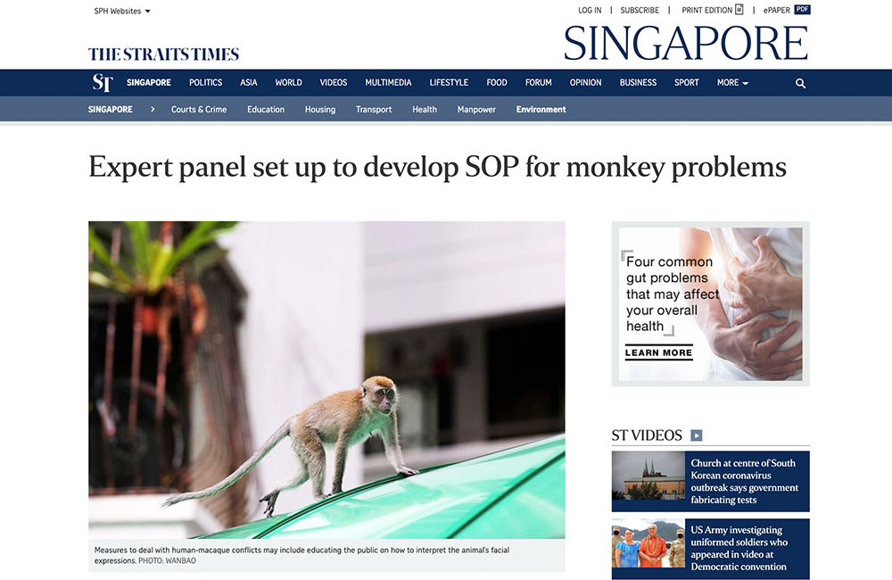 Expert panel set up to develop SOP for monkey problems